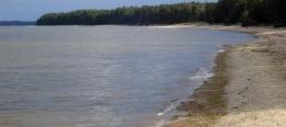 Jūras aļģu sanesumu izvērtēšanas un apsaimniekošanas plāns