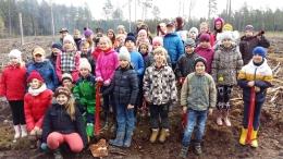 Vides izglītība mežā
