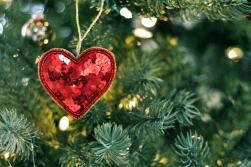 No sirds uz sirdi