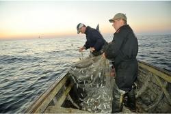 Rūpnieciskās zvejas rīku izsole pašpatēriņa zvejai