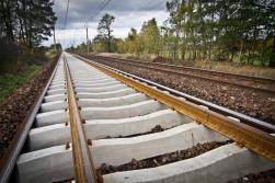 Par Rail Baltica trases novietojumu Salacgrīvas novadā